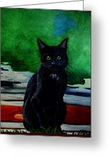 Shadow The Cat Greeting Card