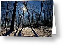 Shadows And Silhouettes Greeting Card