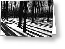 Shadows And Tracks Greeting Card