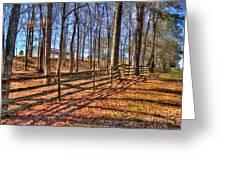 Shadows In Autumn Greeting Card