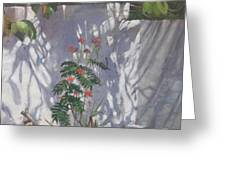 Shadows Number Six Greeting Card