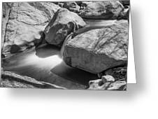 Shadows Of A Creek In Black And White Greeting Card