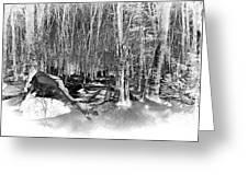 Shadows Of Winter Greeting Card