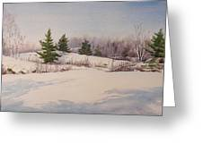 Shadows On Snow In The Canadian Shield  Greeting Card