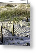Shadows On The Dune Greeting Card