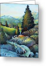 Shady Creek Greeting Card