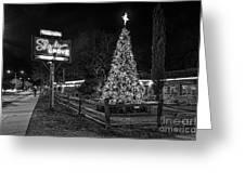 Shady Grove Austin Bw Greeting Card