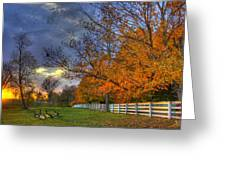 Shaker Fall Geese Greeting Card