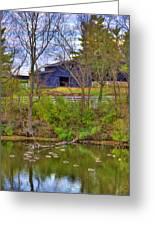 Shaker Lake Geese Greeting Card