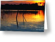 Shallow Water Sunset Greeting Card