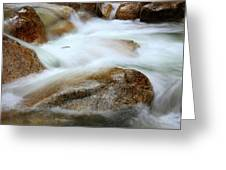 Shannon Falls Greeting Card by Barbara  White