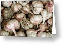 Shantung Garlic Greeting Card