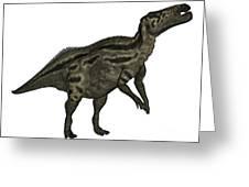 Shantungosaurus Dinosaur Greeting Card