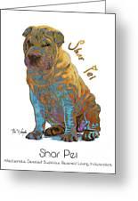 Shar Pei Pop Art Greeting Card