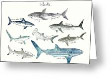 Sharks - Landscape Format Greeting Card by Amy Hamilton