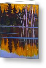 Shaw Lake Reflections Greeting Card by Susan McCullough