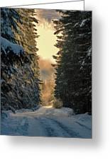 Shawnigan Winter Road Greeting Card