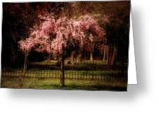 She Weeps - Ocean County Park Greeting Card