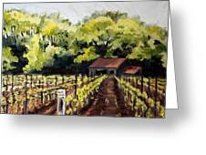 Shed In A Vineyard Greeting Card