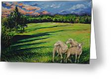 Sheep At Dusk Greeting Card