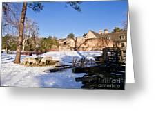 Sheep Farm In Winter Greeting Card
