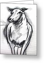 Sheep In Charcoal  Greeting Card