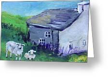 Sheep In Scotland  Greeting Card