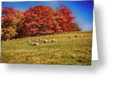 Sheep In The Autumn Meadow Greeting Card
