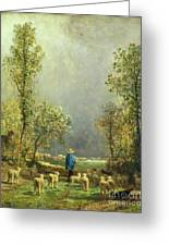 Sheep Watching A Storm Greeting Card