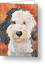 Sheepadoodle Greeting Card