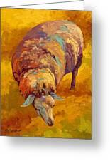 Sheepish Greeting Card by Marion Rose