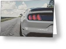 Shelby Detour Greeting Card