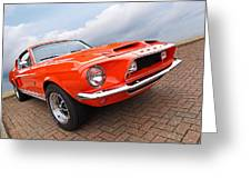 Shelby Gt500kr 1968 Greeting Card