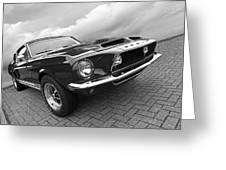 Shelby Gt500kr 1968 In Black And White Greeting Card