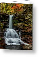 Sheldon Reynolds Falls Greeting Card