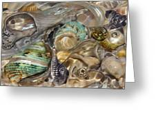 Shell Fluidity Greeting Card