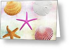 Shells Background Greeting Card