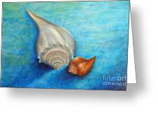 Shells In Blue Greeting Card