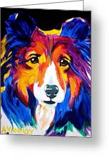 Sheltie - Missy Greeting Card by Alicia VanNoy Call