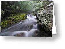 Shenandoah Mountain Stream Greeting Card