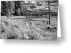 Shepard Lake Greeting Card