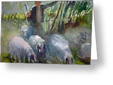 Shepherd... Greeting Card