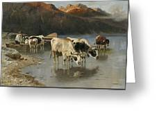 Shepherd With Cows On The Lake Shore Greeting Card