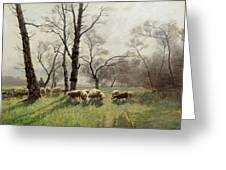 Shepherd With His Flock In The Evening Light Greeting Card
