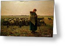 Shepherdess with her Flock Greeting Card by Jean Francois Millet