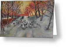 Shepherd's Delight Greeting Card