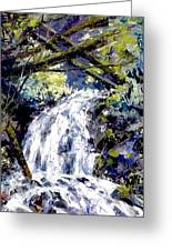 Shepherds Dell Falls Coumbia Gorge Or Greeting Card