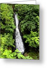 Shepperd's Dell Falls, Oregon Greeting Card