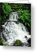 Shepperd's Dell In Rain Greeting Card