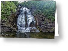 Shequaga Falls Greeting Card